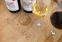 Rota dos vinhos & sabores